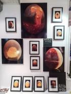 """Exposition """"Dans ma boite à Oeuf, j'ai vu l'univers"""" - Galerie Artwork - Pont de Beauvoisin - 2013"""